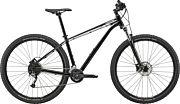 Rower górski Cannondale Trail 29 6 2020